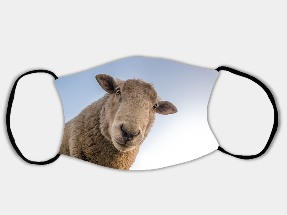 Country Images Personalised Custom Face Mask Masks Facemask Facemasks UK Scotland Gifts Curious Sheep Scottish