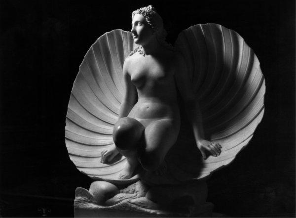 Venere che esce da una conchiglia, scultura di Carlo Finelli.